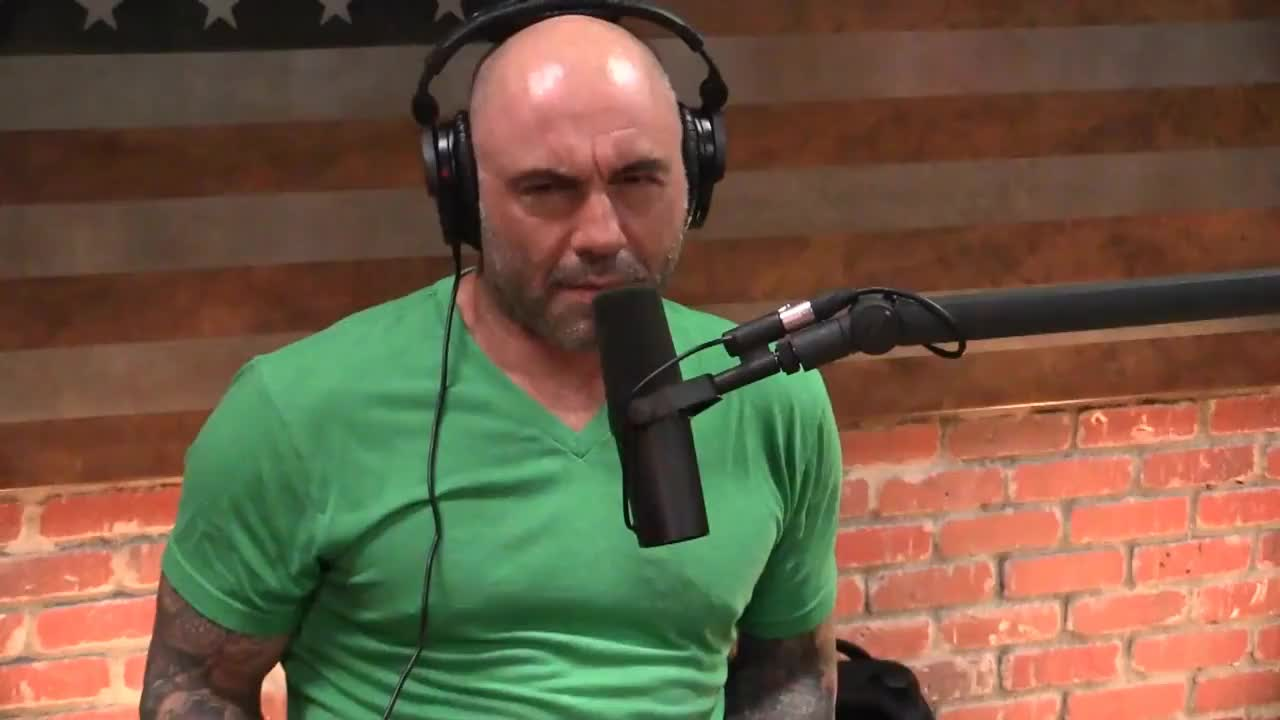 Joe, NDT, astrology, comedian, comedy, funny, huh, joerogan, jokes, jre, podcast, what, wtf, Joe Rogan What GIFs