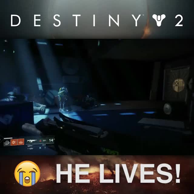 Watch HE LIVES! GIF by @praisethegame on Gfycat. Discover more Bungie, Destiny 2, Funny, Gaming, Sweeping GIFs on Gfycat