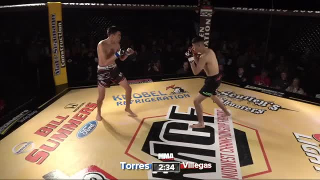 Watch and share Fighting GIFs and Knockout GIFs by Wildmatt on Gfycat
