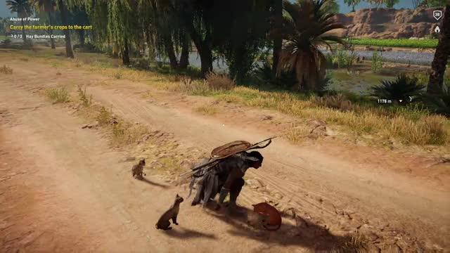 Watch cats GIF by Xbox DVR (@xboxdvr) on Gfycat. Discover more AssassinsCreedOrigins, Medlilove, xbox, xbox dvr, xbox one GIFs on Gfycat