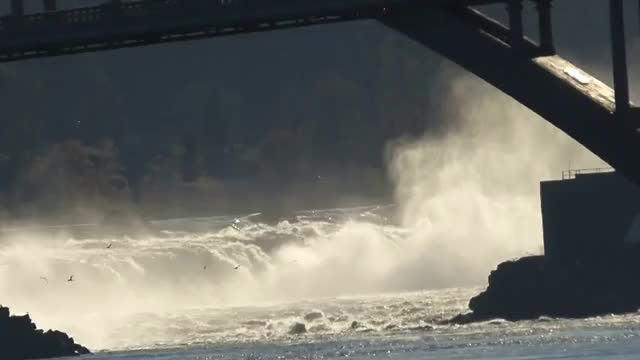 Watch and share Willamette Falls Under The Oregon City Arch Bridge GIFs on Gfycat