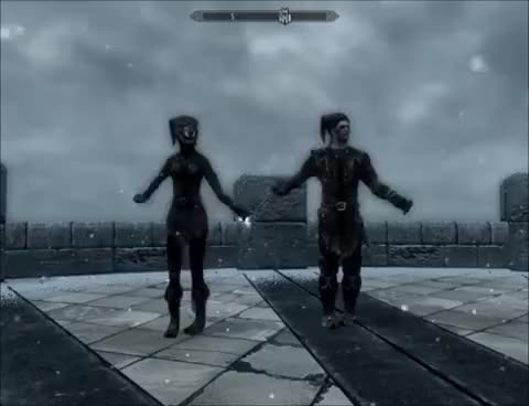 Watch Cicero and Kahjiit dance GIF on Gfycat. Discover more cicero, cicero dance, cute, lol, skyrim GIFs on Gfycat