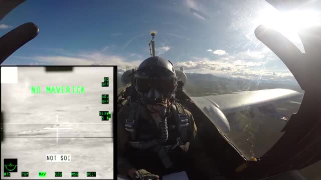 Watch and share Warthog GIFs and Flying GIFs by drmarianus on Gfycat
