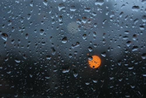 Watch and share Rainy GIFs on Gfycat