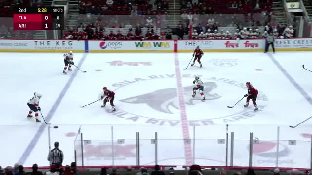 Watch and share Florida Panthers GIFs and Arizona Coyotes GIFs by Optimus Reim on Gfycat