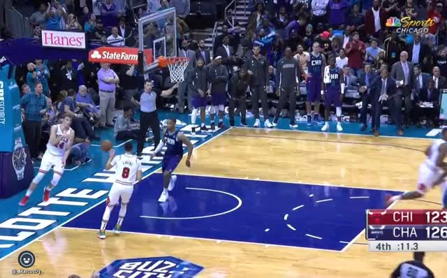 Watch and share Charlotte Hornets GIFs and Basketball GIFs by MarcusD on Gfycat