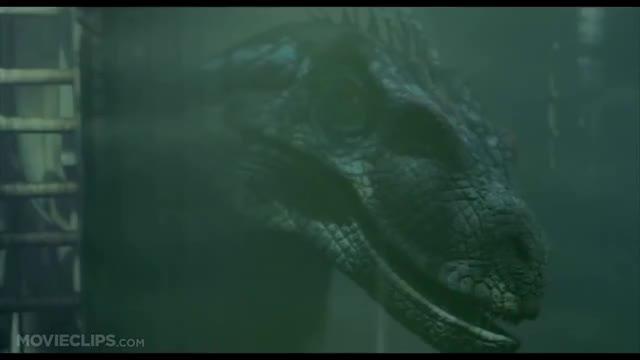Watch Jurassic Park 3 (4/10) Movie CLIP - Raptor Ambush (2001) HD GIF on Gfycat. Discover more 01ckhj, 01d0b1, 01t2sk, 023kzp, 09_2tp, 247386, amg, movieclipsdotcom GIFs on Gfycat