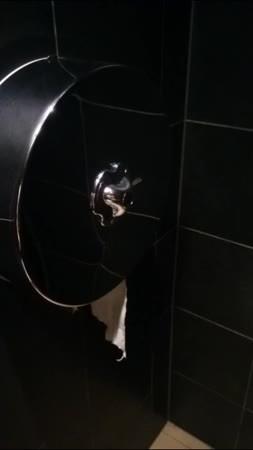 oddlysatisfying, perfectfit, Door and TP dispenser at a restaurant toilet (reddit) GIFs