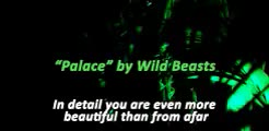Watch and share Wild Beasts GIFs and [1] GIFs on Gfycat