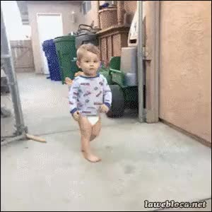 Watch Cute Kid Dog Knockdown GIF on Gfycat. Discover more related GIFs on Gfycat