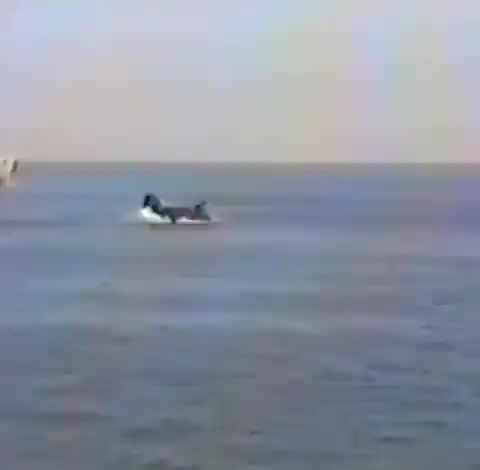 Watch and share A CH-46 Experiences A Hover-out-of-ground Engine Failure With A Full Crew In 1986 While On Board A Ship GIFs by tothetenthpower on Gfycat