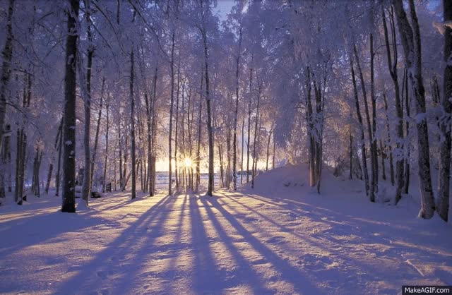 Watch and share Happy Winter Solstice GIFs on Gfycat