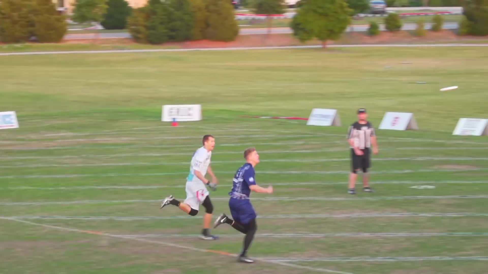 Sports, TheAUDLChannel, american ultimate disc league, audl, highlight reel, highlights, sports, theaudlchannel, top 10, ultimate, ultimate frisbee, Joel Clutton Layout Swat GIFs