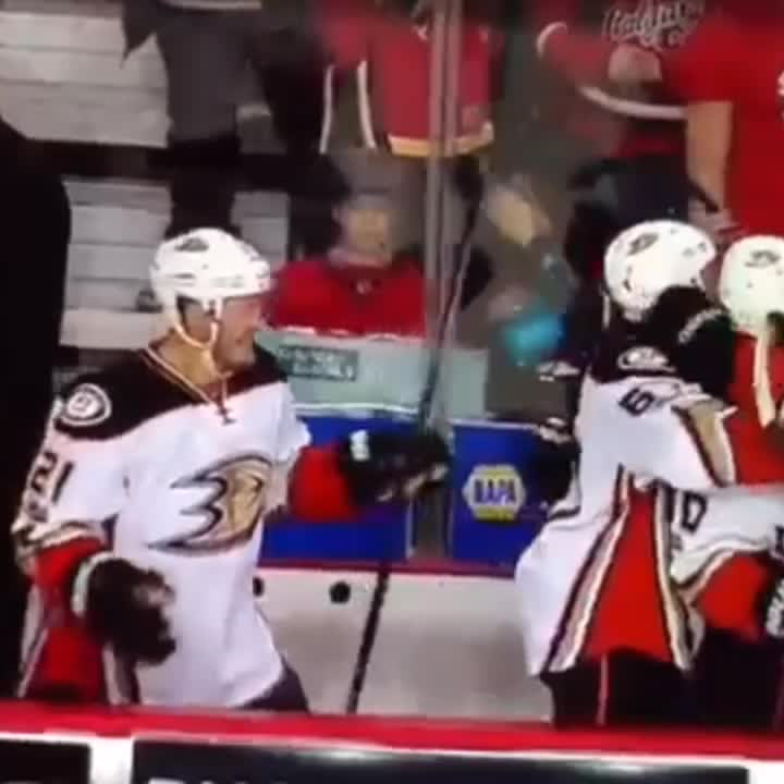 The Calgary Flames Have Been Swept In 4 Games By The Anaheim Ducks