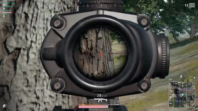 Watch and share Working As Intended? Ghillie Ninja PUBG GIFs on Gfycat