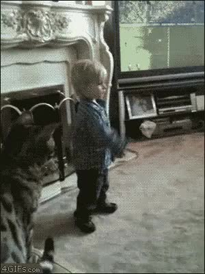 Watch catattacj GIF on Gfycat. Discover more childrenfallingover GIFs on Gfycat