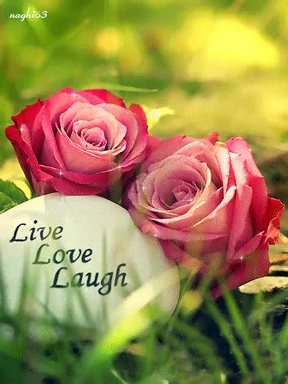 Watch and share Live Love Laugh Animation GIFs on Gfycat