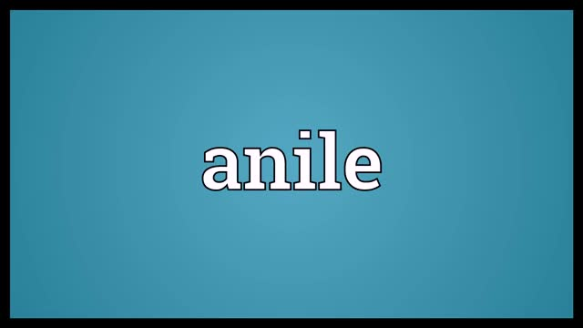 Watch Anile Meaning GIF on Gfycat. Discover more Audio Dictionary, anile, anile definition, anile meaning, anile pronunciation, definition, pronunciation GIFs on Gfycat
