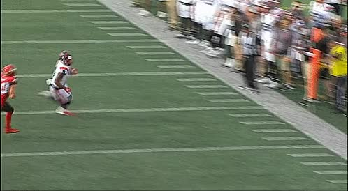 Watch and share Mcmahon Stadium GIFs and Nate Holley GIFs by Archley on Gfycat