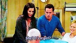 Watch and share Chandler And Monica GIFs and Chandler Bing GIFs on Gfycat