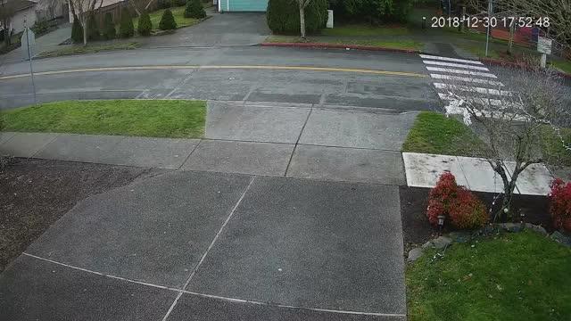 Package Thief in Kirkland Washington