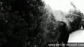 Watch Smoke Bomb GIF on Gfycat. Discover more related GIFs on Gfycat