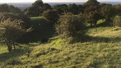Watch and share Broadway Tower GIFs by tingette on Gfycat