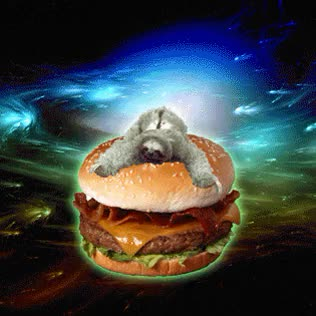 Watch and share Cheeseburger GIFs on Gfycat