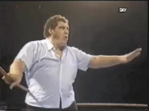 Watch Andre The Giant No GIF on Gfycat. Discover more andré the giant GIFs on Gfycat