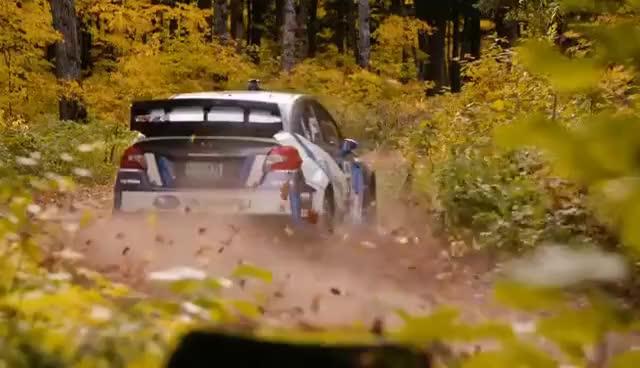 Watch and share Subaru WXR STI Rally America 2016 GIFs on Gfycat