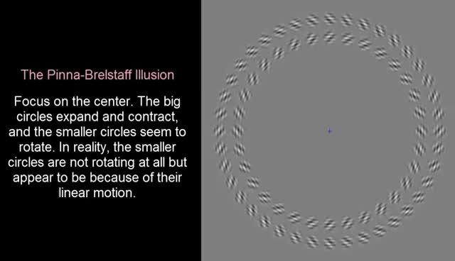 Watch and share Optical Illusion: Pinna-Brelstaff Illusion GIFs on Gfycat