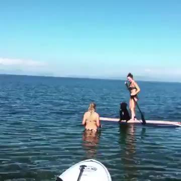 Peaceful paddle boarding - Imgur GIFs
