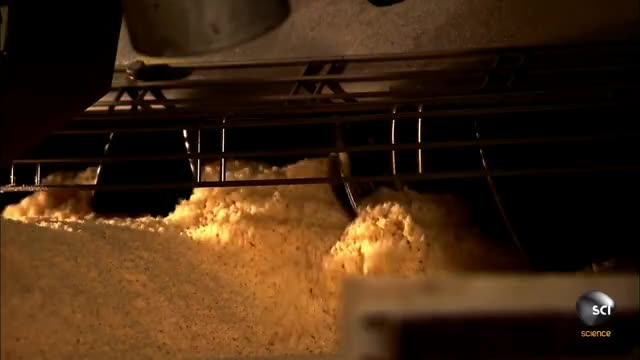 Watch and share This Is How Stackable Potato Chips Are Made! GIFs by GIFs For Everything on Gfycat