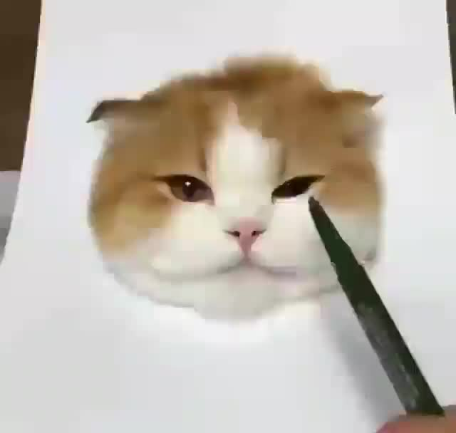 Watch and share Incredibly Realistic Rendering Of A Cat GIFs by tothetenthpower on Gfycat