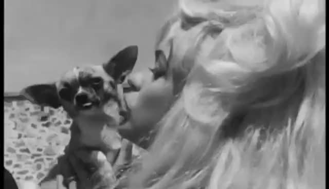 Jayne Mansfield | God Knows I Tried | Lana Del Rey