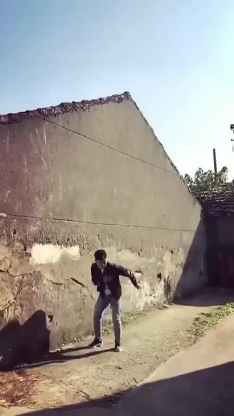 Watch Pupper Parkour GIF by @aasmanoor on Gfycat. Discover more aww GIFs on Gfycat