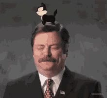 Watch Ron Swanson GIF on Gfycat. Discover more nick offerman GIFs on Gfycat