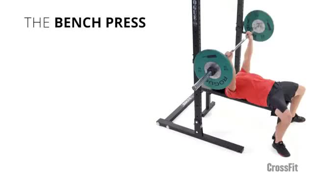 Watch and share The Bench Press GIFs on Gfycat