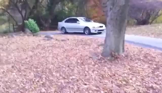Watch and share PK E39 BMW M5 Burnout In HD GIFs on Gfycat