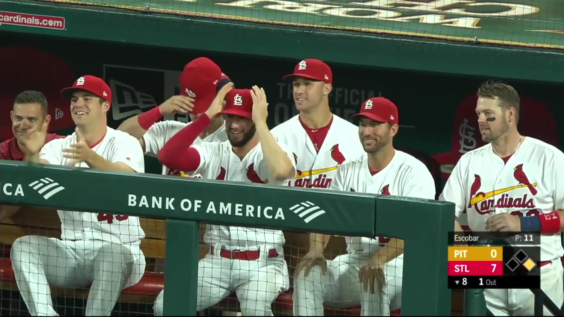 baseball, cardinals, pittsburgh pirates, st louis cardinals, st. louis, Cardinals bench celebrates Mikolas' hit. GIFs