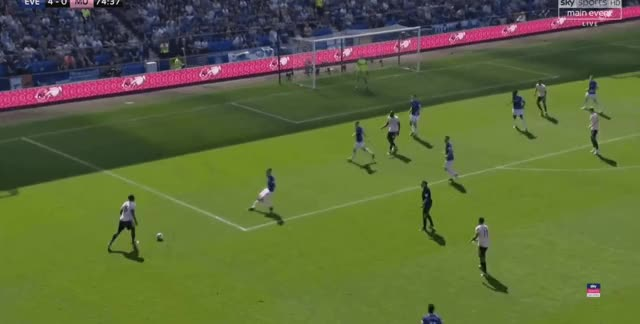 Watch and share Paul Pogba Short Pass Vs Everton 18-19 GIFs by FIFPRO Stats on Gfycat