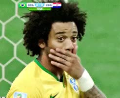 Watch brazil GIF on Gfycat. Discover more related GIFs on Gfycat