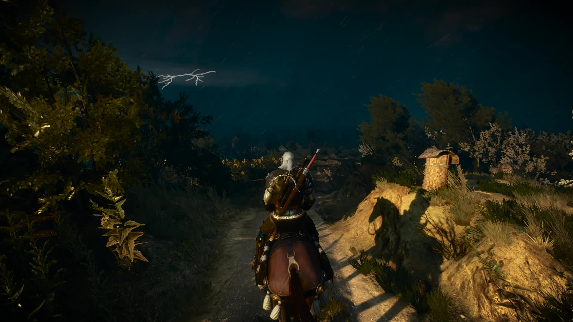 Witcher, Witcher 3, graphics, The beauty of The Witcher 3 GIFs
