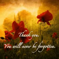 Watch and share Remembrance Day GIFs on Gfycat