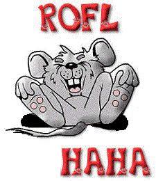 rofl face GIFs