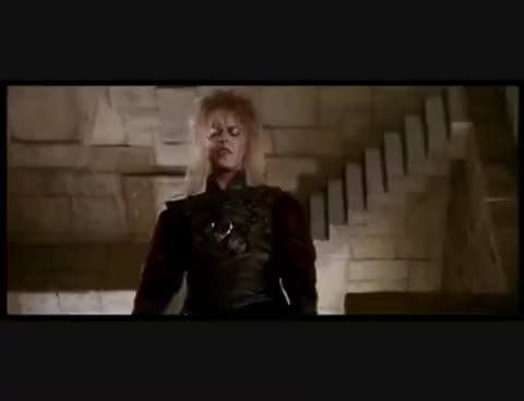 Watch Off the Walls GIF on Gfycat. Discover more Labyrinth GIFs on Gfycat