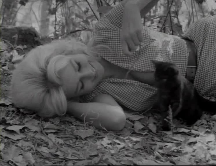 busty, cat, kitten, mudhoney, playing, pussy, rena horten, russ meyer, Mudhoney - woman playing with a kitten GIFs