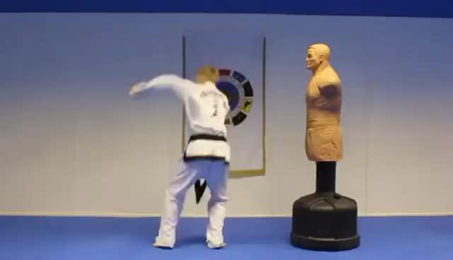 Watch and share Taekwondo GIFs on Gfycat
