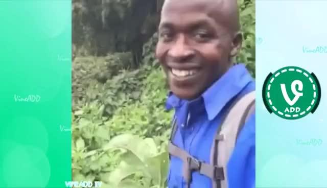 "Watch and share ""Okay"" Vine Sound GIFs on Gfycat"
