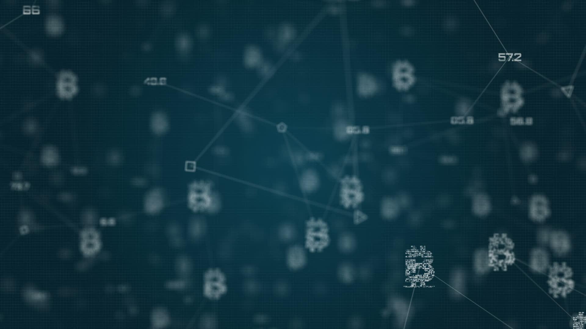 Bitcoin Network GIFs